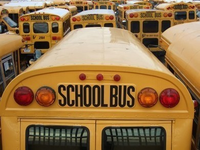 11 Reasons To Get Your Kids Out Of The Government Schools | Gold and What Moves it. | Scoop.it