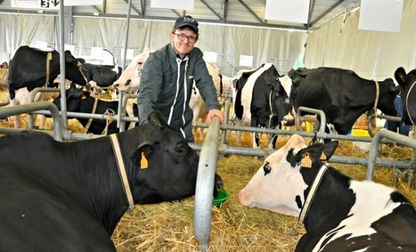 A Aquitanima, les concours, une bouffée d'oxygène pour les éleveurs | Agriculture en Pyrénées-Atlantiques | Scoop.it