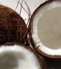 63 000 noix de coco à la mer ! | Mais n'importe quoi ! | Scoop.it