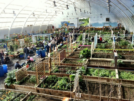 Growing Food in the Northwest Territories | Common Sense Gardening | Scoop.it