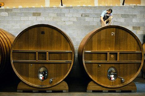 Brettanomyces, a Funky Yeast, Makes Flavorful Beers | Homebrewing, Beer and Mead | Scoop.it
