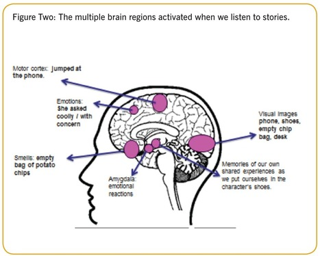 The science behind storytelling | BrainLovers | Scoop.it