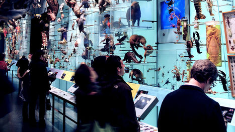 How The Natural History Museum Is Changing The Ratio Of Women And Minorities in STEM | Lydia Dishman | Fast Company | Kbec | Scoop.it