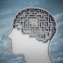 Author Christine Comaford on Using Psychology to Engage Employees | Human Resource Management | Scoop.it