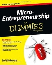 """Micro-Entrepreneurship for Dummies:"" Great Small Business Ideas 