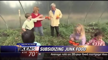 You are what you subsidize? Junk food getting plenty of taxpayer help   Food issues   Scoop.it