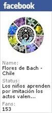 Flores de Bach | Flores de Bach | Scoop.it