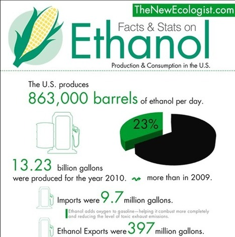 Ethanol Production Stats in the US (Infographic) | green infographics | Scoop.it
