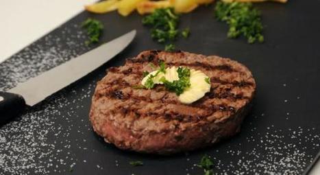 Une campagne de promotion de la viande s'invite dans les écoles   Viandes et Produits carnés   Scoop.it