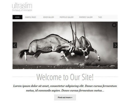 Free Css Template: Ultraslim | Lectures web | Scoop.it