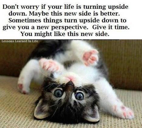 Weekend Thoughts   catnipoflife   Scoop.it