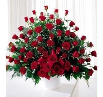 Send Flowers to Dubai | Send Flowers Online to Dubai | Scoop.it