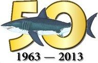 Predatory Behavior of Pacific Coast White Sharks   Great White Sharks   Scoop.it