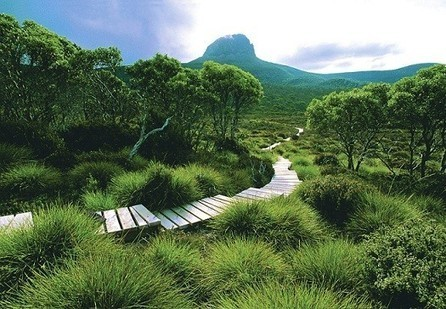 Australia's top walking and hiking hotspots | Cruise Travel | Scoop.it