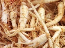 Why Ginseng Has Become So Popular | Changing Trends of Article Writers | Scoop.it