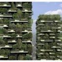El bosque vertical - Amazings | Cultivos Hidropónicos | Scoop.it