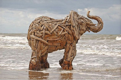 Life Sized Driftwood Elephant Sculptures by South African Artist | Matric Art Syllabus | Scoop.it