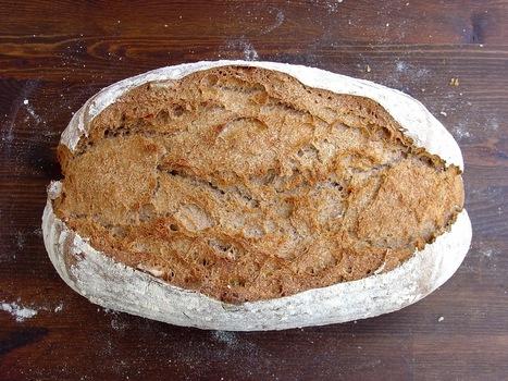 Ma Petite Boulangerie: Especial panes con poolish - 4. Pan integral con nueces y miel | Mis panes | Scoop.it