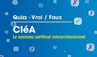 La famille des Quizz Opcalia s'agrandit - OPCA Opcalia | Cléa | Scoop.it