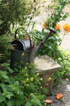 Preparer le jardin pour le printemps   Maison Blog   Tout pour le jardin   Scoop.it