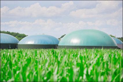 L'industrie chimique bascule vers la bio-économie   L'industrie de l'économie verte et durable all around the world!   Scoop.it