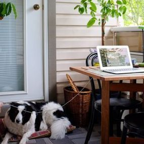 5 Ways to Know if You Should Allow Telecommuting | Mobile Workforce | Scoop.it
