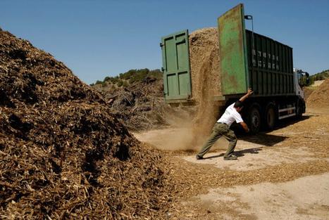 Puede la economia del petroleo ser reemplazada por la biomasa? | Noticias de ecologia y medio ambiente | Youtopia | Scoop.it