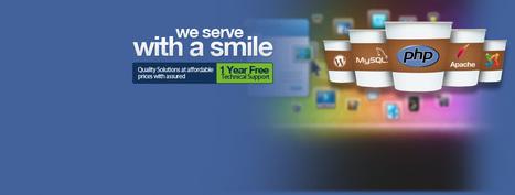 Cost of Hiring a Web Designer – Points That Influence Website Design Budget   Best Website Design Company Chandigarh   Scoop.it
