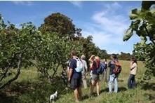 Fête de la Nature 2012 : idées de balades à Port-Cros, Porquerolles et sur la presqu'île de Giens | Balades, randonnées, activités de pleine nature | Scoop.it