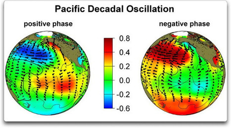 Decadal Oscillations Of The Pacific Kind | JOIN SCOOP.IT AND FOLLOW ME ON SCOOP.IT | Scoop.it