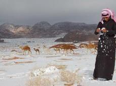 Il a neigé dans le désert saoudien ! Plus Belle Ma Terre -   Bio, Santé et Bien-être   Scoop.it
