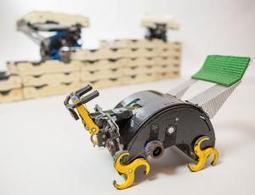Termite robots build castles with no human help | robotics | Scoop.it