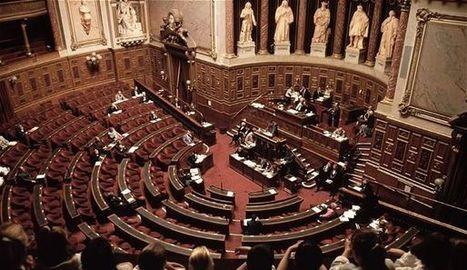 Formation professionnelle: le projet de loi rejeté au Sénat - L'Express   L'actualité sur la formation professionnelle   Scoop.it