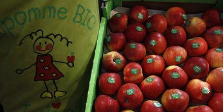 La France devient la troisième surface agricole bio d'Europe | Actu Agri Bio | Scoop.it
