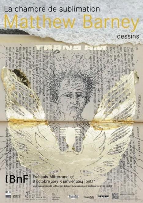 La chambre-cerveau de Matthew Barney | Magic digest : art & creation | Scoop.it