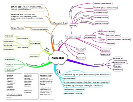 Antibiotics Mindmap on Meducation | Medical Education Canada | Scoop.it