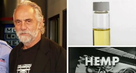 """RiseEarth : Tommy Chong of 'Cheech & Chong' Fame: """"I'm Cancer-Free"""" Thanks to Hemp Oil and the Right Diet 