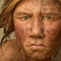 "Wanted: An ""extremely adventurous female human"" to give birth to a Neandertal 