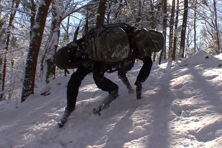 Boston Dynamics: Dedicated to the Science and Art of How Things Move. | Bionics | Scoop.it