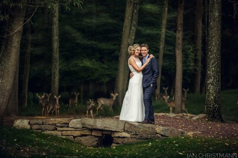 A Few Unexpected Wedding Guests Resulted In One Magical Photo | Weddings | Scoop.it
