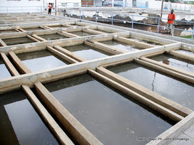La Regideso inaugure une usine de traitement d'eau à Kasangulu ... | Actus Eau | Scoop.it