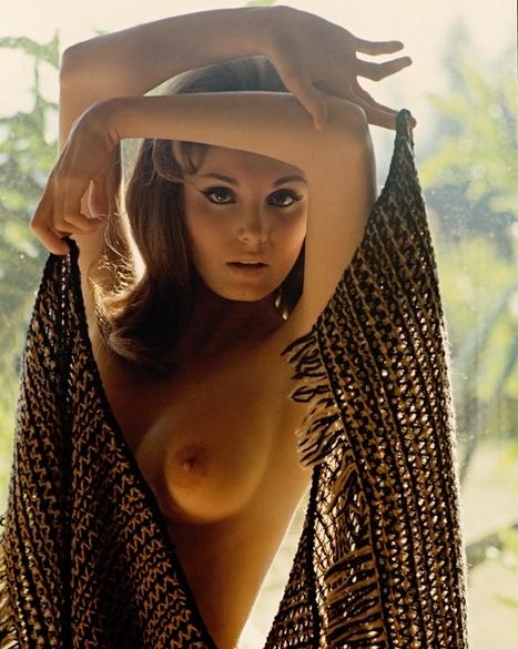 Angela Dorian | Busty Boobs Babes | Scoop.it