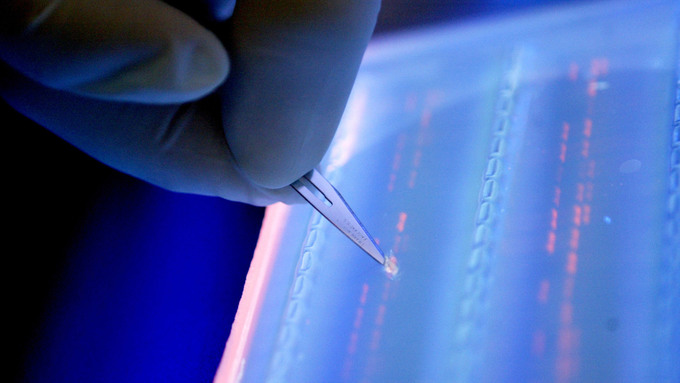 Post-Sapiens, les êtres technologiques - Scientists say all the world's data can fit on a DNA hard drive the size of a teaspoon