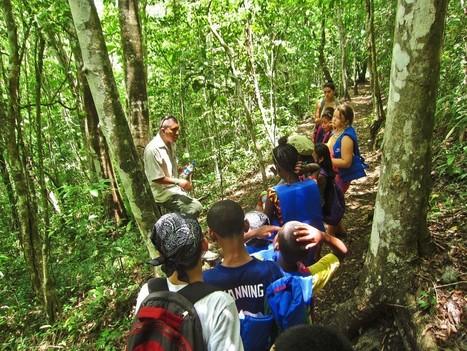 Eco Kids and Medicinal Plants | ApocalypseSurvival | Scoop.it