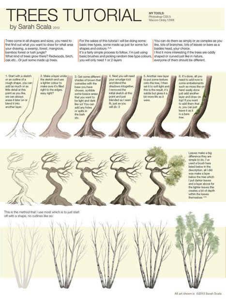 Drawing References For Beginners Trees | Drawing References