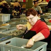 Kabinet en sociale partners eens over sociale agenda voor arbeidsmarkt van de 21e eeuw   Nieuwsbericht   Rijksoverheid.nl   Verzorgingsstaatmaatschappijleer   Scoop.it