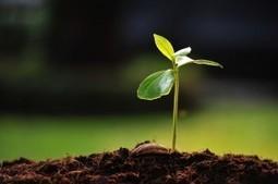 15 oportunidades del marketing 2.0 para emprender   Bloguismo   Personas 2.0: #SocialMedia #Strategist   Scoop.it