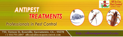 Best Anti-Pest treatments and control Sacramento | AllinOnePestControl | All in One Pest Control | Scoop.it