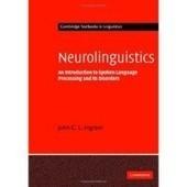 Download ebook: Neurolinguistics: An Introduction to Spoken - Free   Profesora de Español   Scoop.it