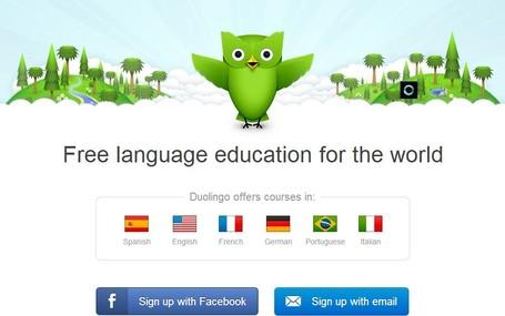 Screenshot of Duolingo Website